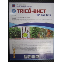 Men trichoderma ĐHCT